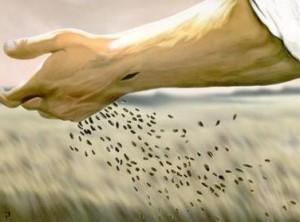 parabola-do-semeador