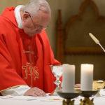 """Papa: """"Verdadeiros cristãos servem gratuitamente"""""""