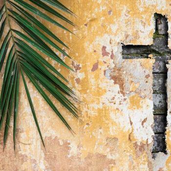A Caminho da Semana Santa